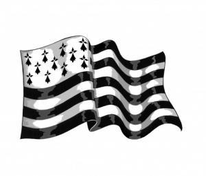 drapeau breton gite er vocen gite carnac